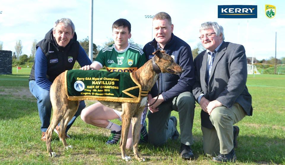 Kerry GAA - dogs