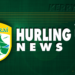 Credit Union County Senior Hurling League
